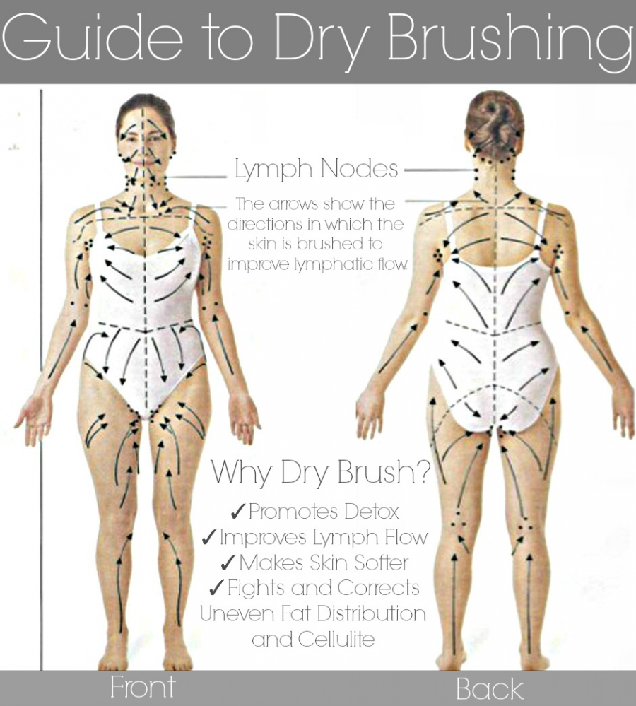 Body chart for dry skin brushing 12-5-14