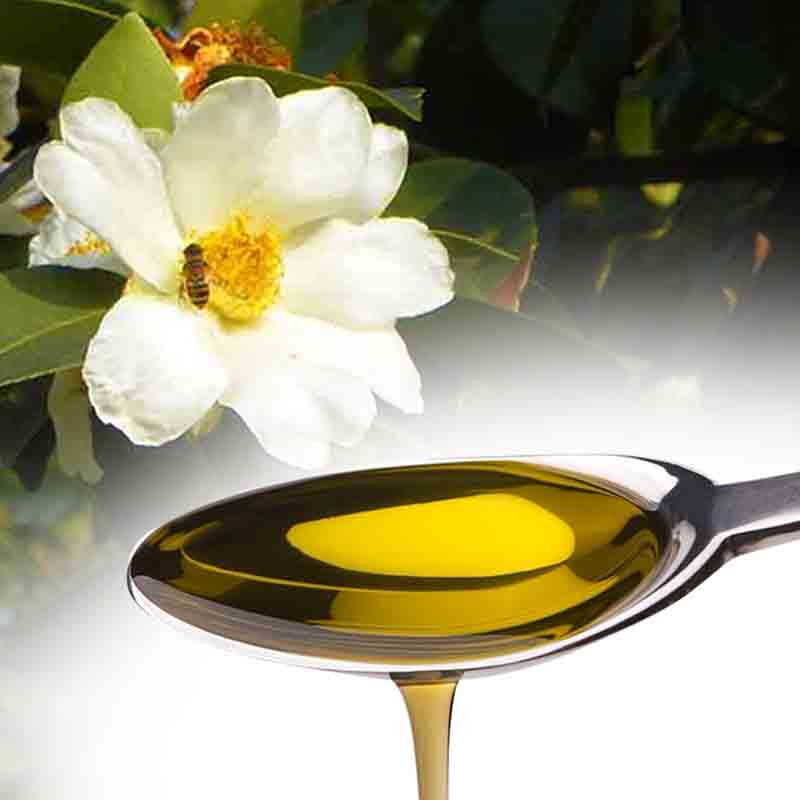 187 Camellia Oil The Beauty Secret Of The Gieshas Beauty