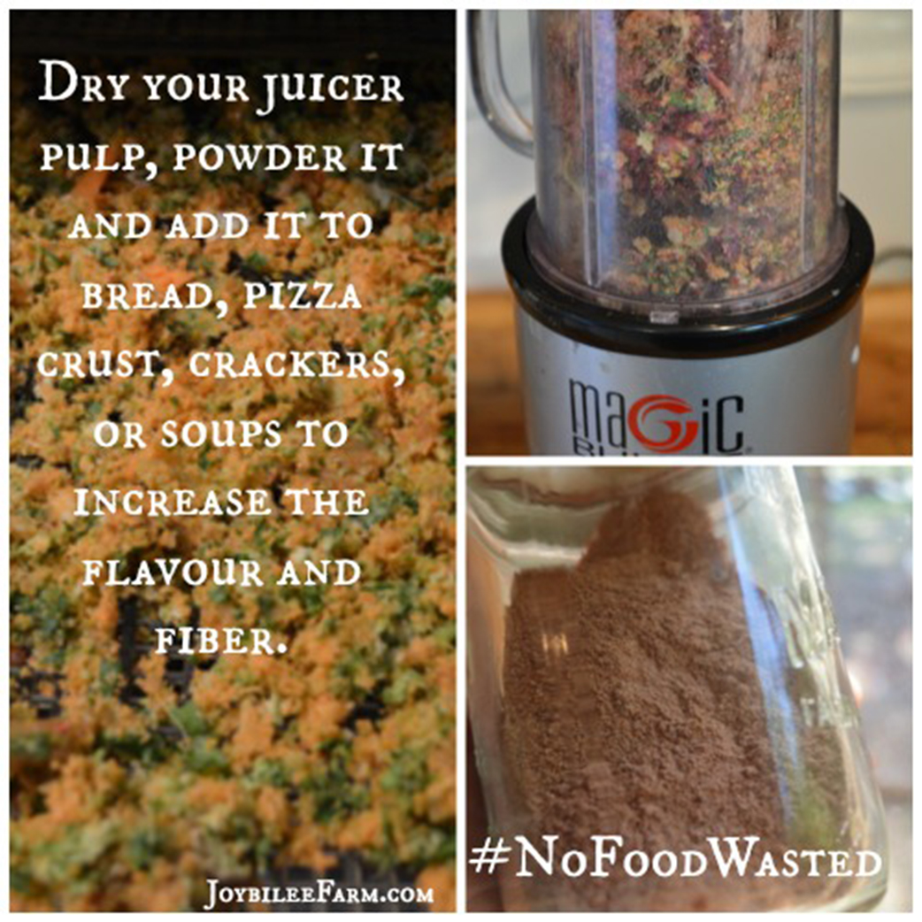 Juicerkit – What to do With Pulp From Juicer