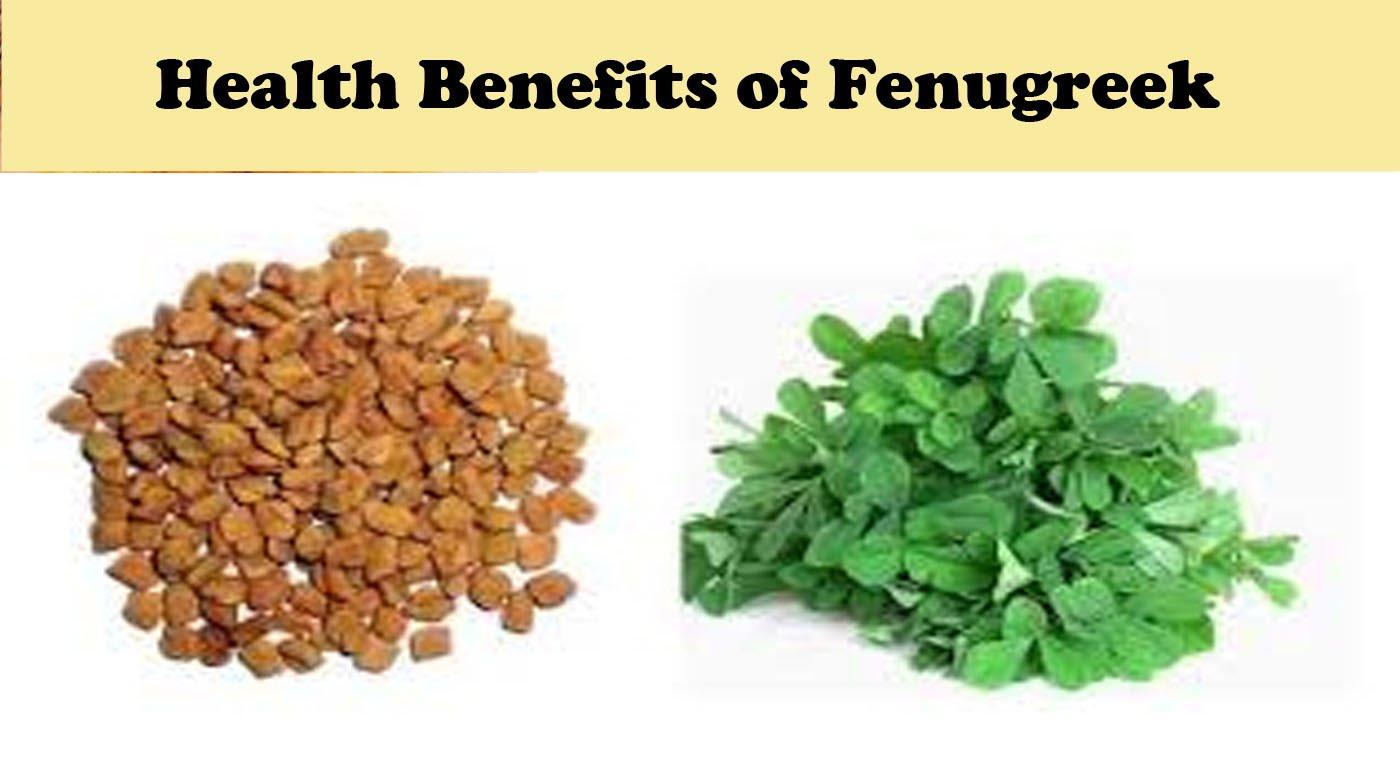 Fenugreek fresh and seeds
