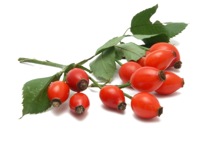 Rose-Hip-Oil-pic