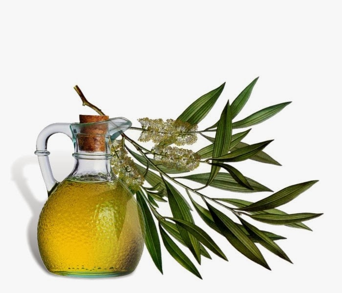 Tea-Tree-Oil-2