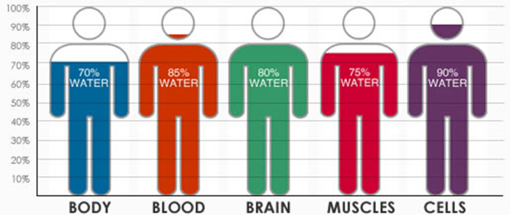 Water-Compositions-in-Human-Body