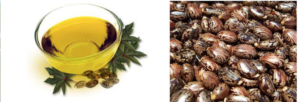 image-of-castor-oil