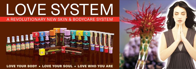 love_system (1)
