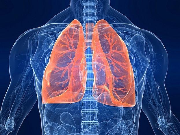 lungs-diagram