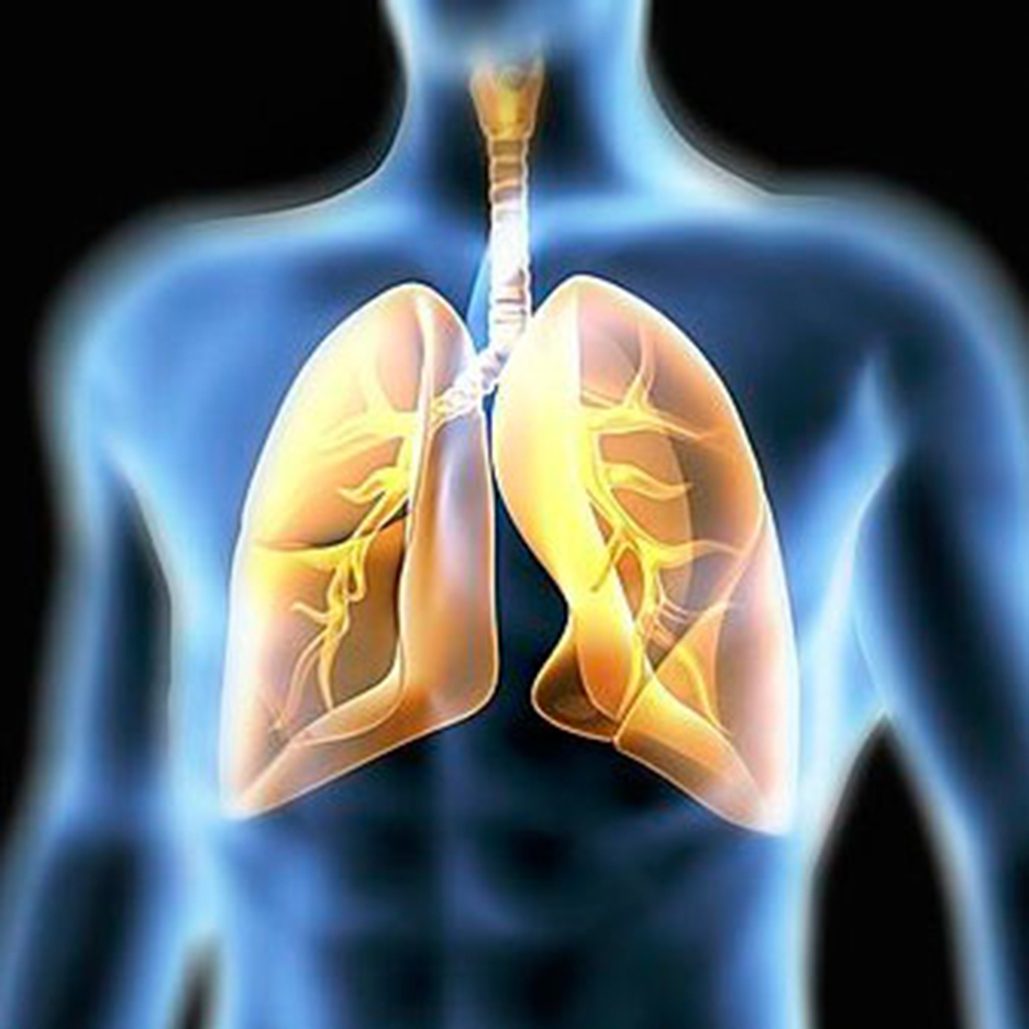 lungs-in-a-blue-body