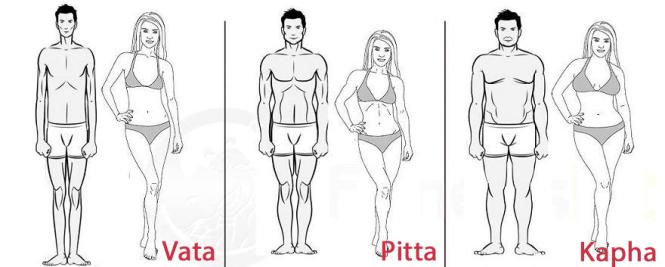 vata-pitta-kapha-univergia